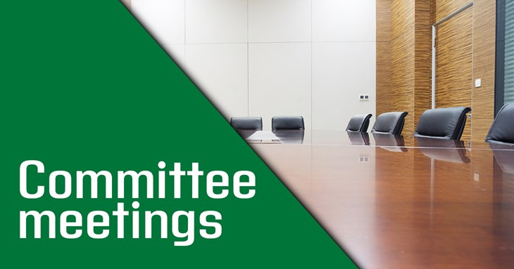 Committee Meetings